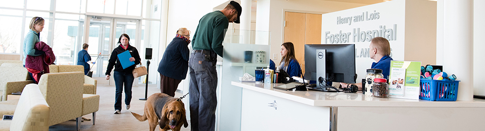 12/15/2016 - Grafton, Mass. - Jeff Doyle and Butter, his eight-year-old bloodhound, sign in at the front desk for their oncology appointment at the Foster Hospital for Small Animals on December 15, 2016. Jeff drove down from Vermont to bring Butter to her appointment and expected to wait for about four hours before going home. The Cummings School of Veterinary Medicine recently completed an expansion and renovation of the lobby, examination rooms and areas of the ER at the on-campus hospital. (Alonso Nichols/Tufts University)