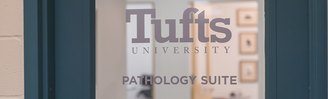 Pathology service, robinson, microscope, students