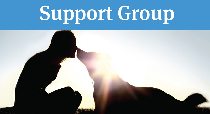 Support Group_FHSA_Header Image 800x435