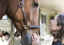 10/03/2017 - Gloucester, Mass. - Portrait of Ann Seymour St John with her horse Laddie on her farm in Gloucester, Mass., on Oct. 3, 2017. Laddie is a former patient of the equine sports medicine program at Cummings School of Veterinary Medicine. (Anna Miller/Tufts University)