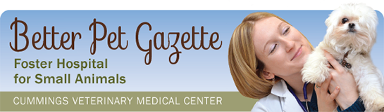 Better Pet Gazette header