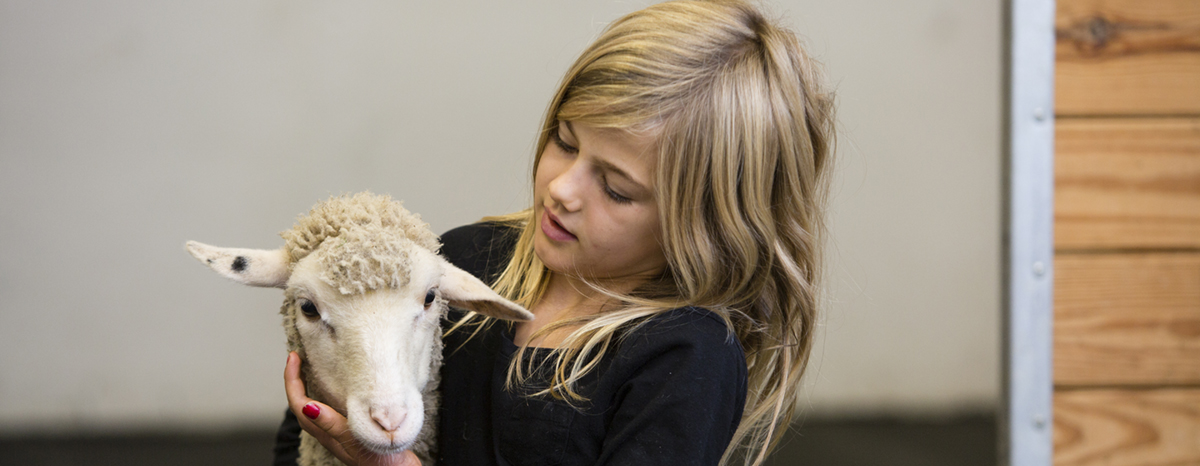 10/12/2017 - Woodstock, Conn. - Lidia Garner, 6, of Glastonbury, Conn., hugs her lamb during a checkup at the Tufts Ambulatory Service on October 12, 2017. (Anna Miller/Tufts University)