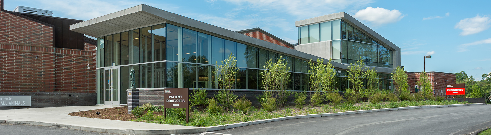 About Cummings Veterinary Medical Center