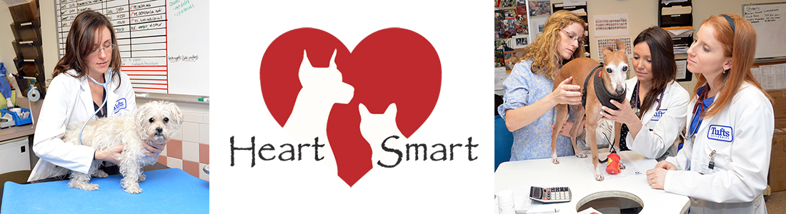 Heartsmart header