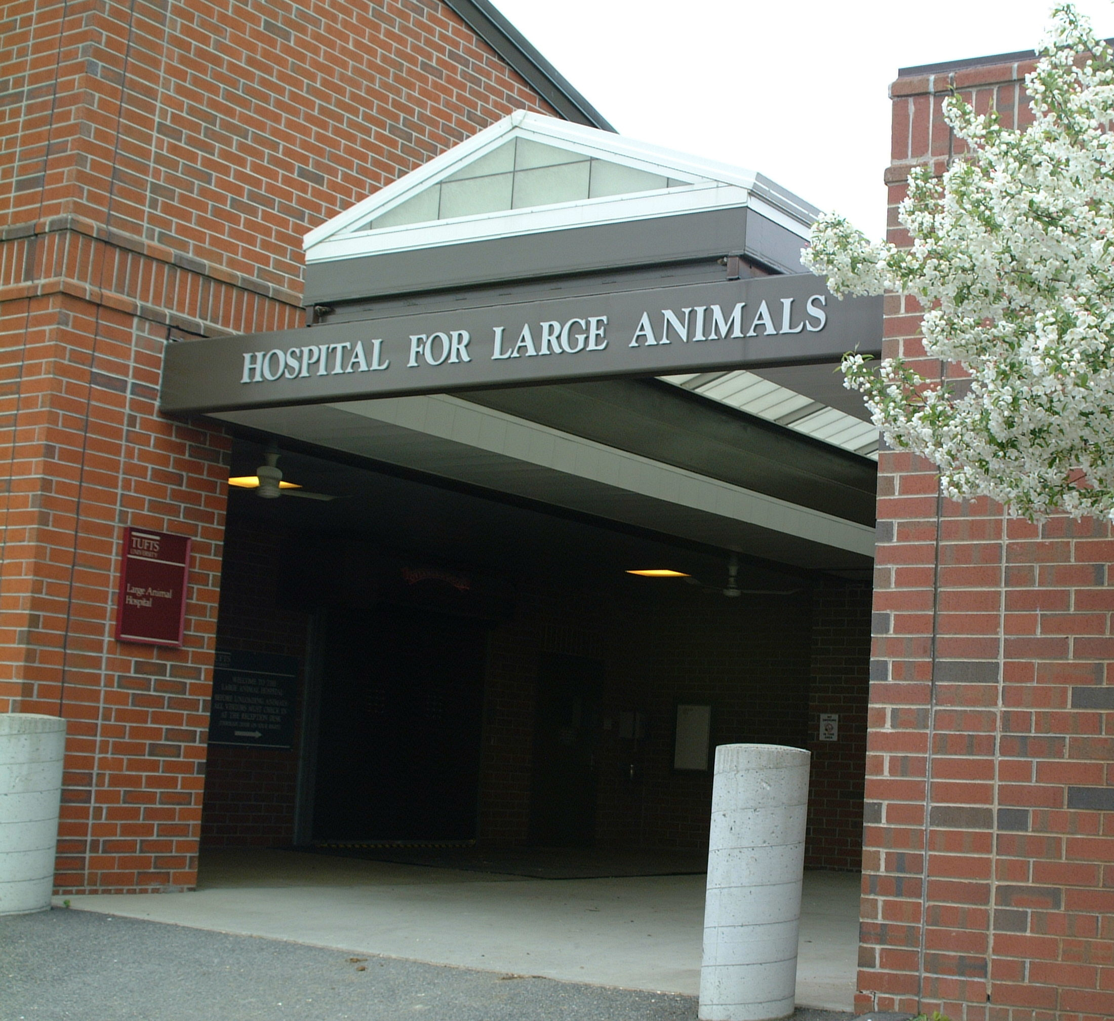 Hospital for Large Animals entrance