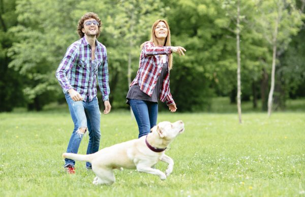 Young Couple Having Fun outdoors with their dog. Throwing Frisbee to dog.