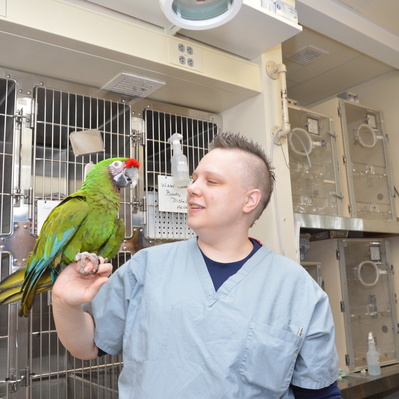 Staff/student with a green parrot
